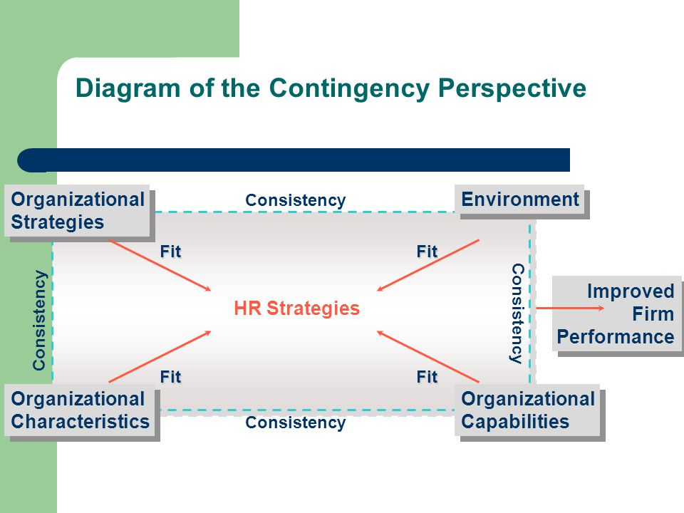 Diagram of the Contingency Perspective