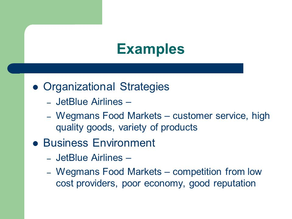 Examples Organizational Strategies Business Environment