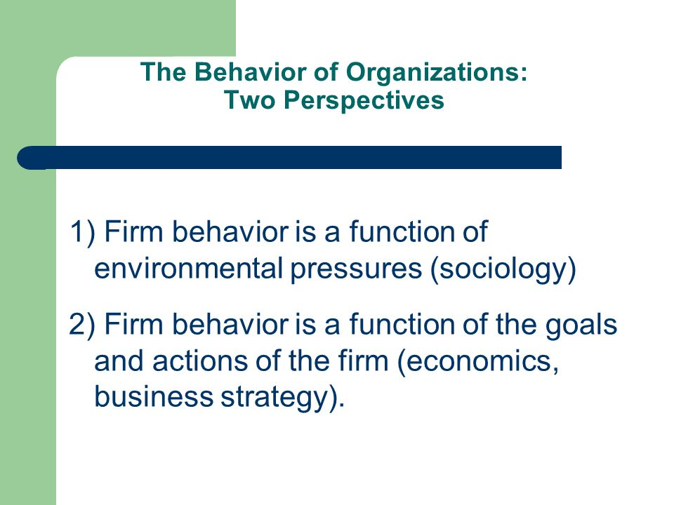 The Behavior of Organizations: Two Perspectives