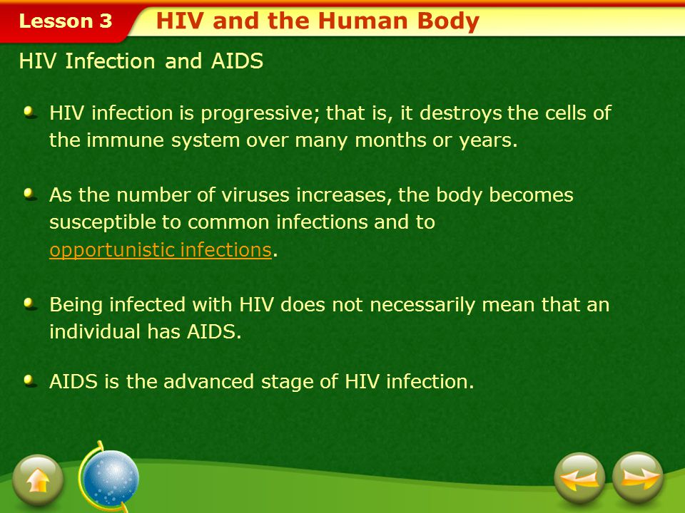 HIV and the Human Body HIV Infection and AIDS