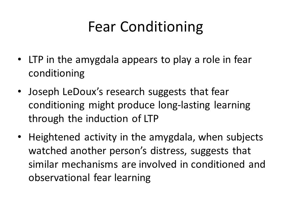 Fear Conditioning LTP in the amygdala appears to play a role in fear conditioning.
