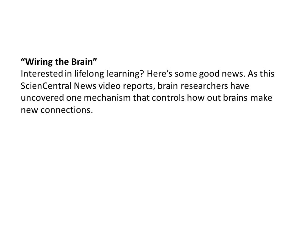 Wiring the Brain