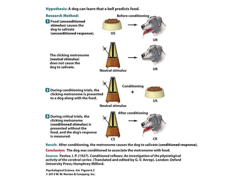 FIGURE 6.3 Scientific Method: Pavlov's Classical Conditioning