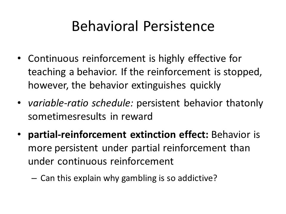 Behavioral Persistence