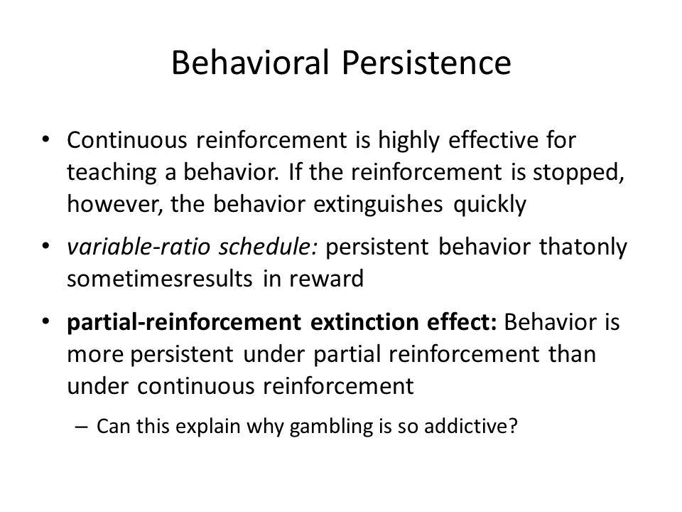 Behavioral Persistence