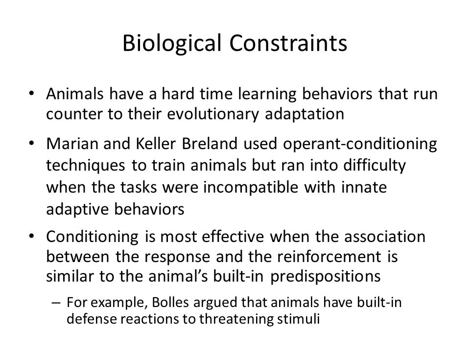 Biological Constraints