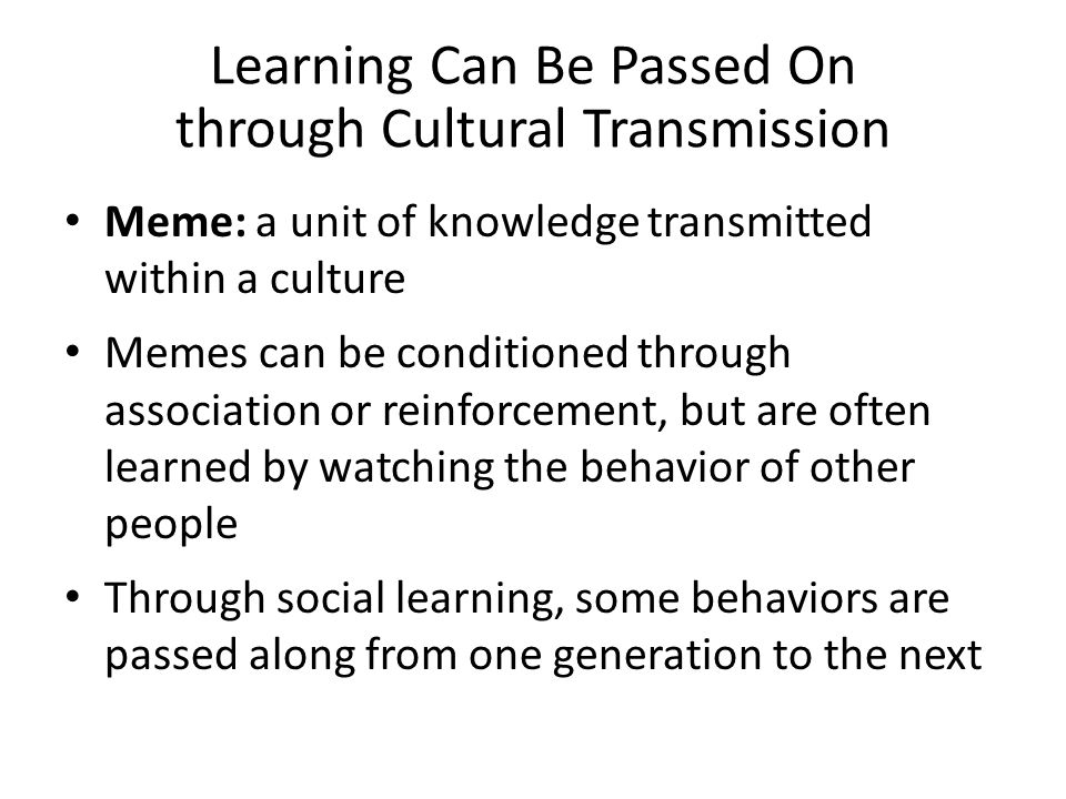 Learning Can Be Passed On through Cultural Transmission