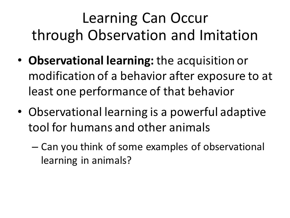 Learning Can Occur through Observation and Imitation