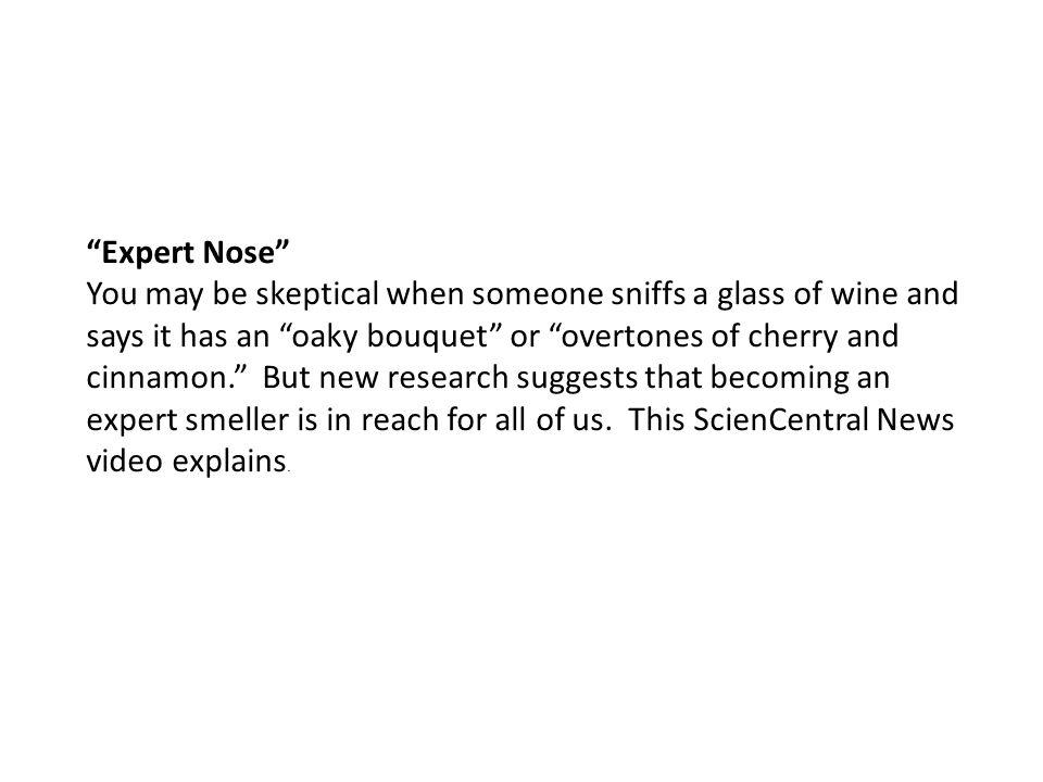 Expert Nose