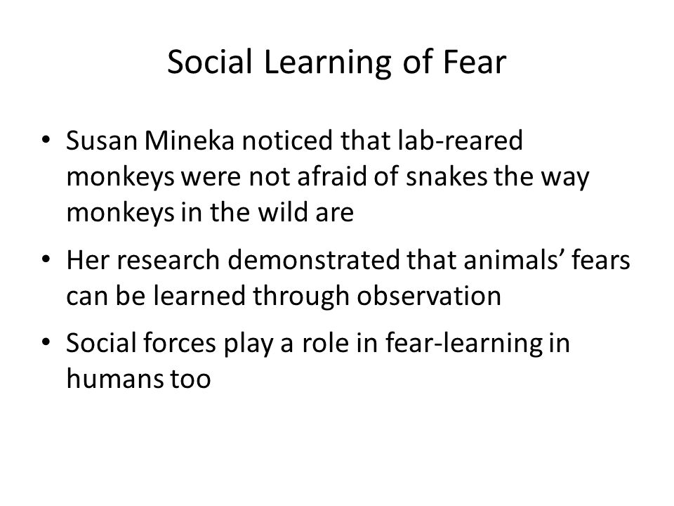 Social Learning of Fear
