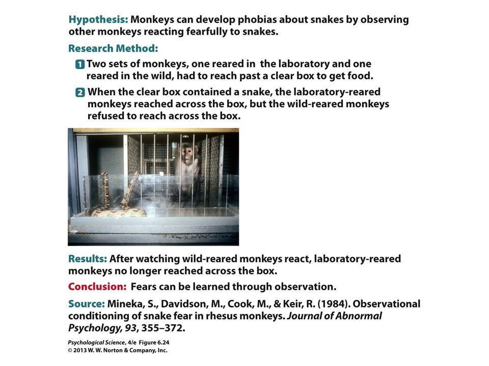 FIGURE 6.24 Scientific Method: Fear Response in Rhesus Monkeys