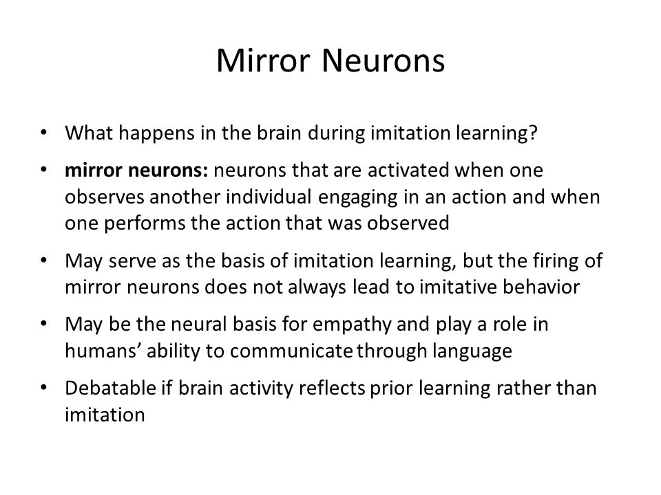 Mirror Neurons What happens in the brain during imitation learning