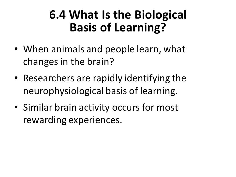 6.4 What Is the Biological Basis of Learning