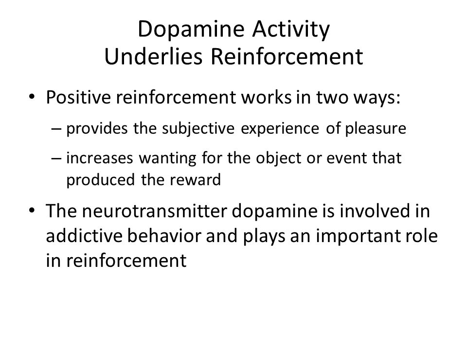 Dopamine Activity Underlies Reinforcement