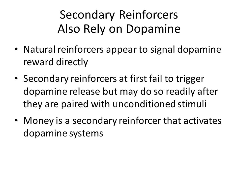 Secondary Reinforcers Also Rely on Dopamine