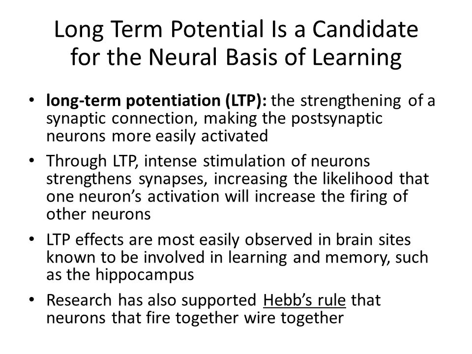 Long Term Potential Is a Candidate for the Neural Basis of Learning