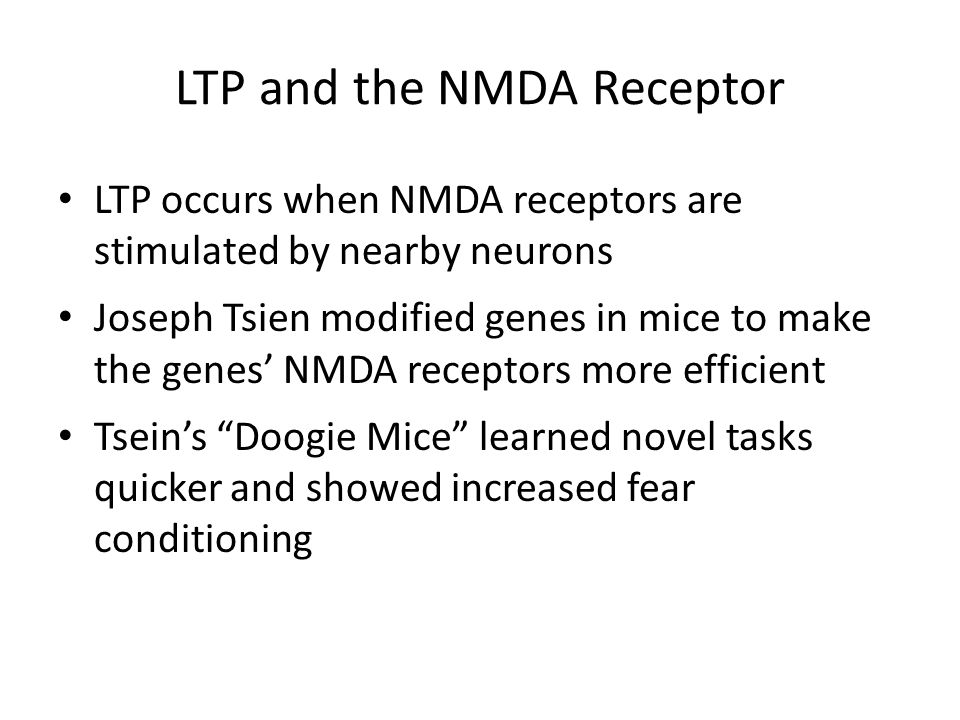 LTP and the NMDA Receptor