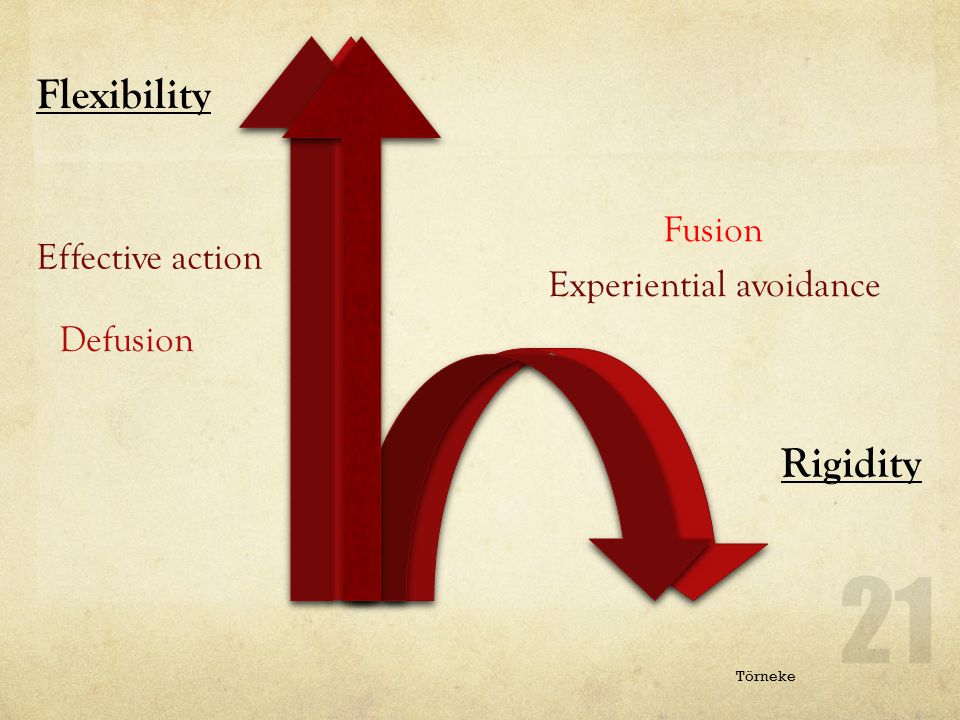 Flexibility Rigidity Fusion Effective action Experiential avoidance