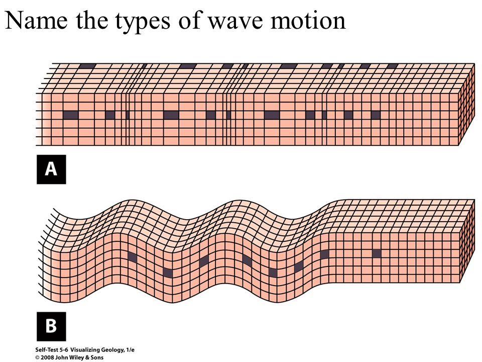 Name the types of wave motion