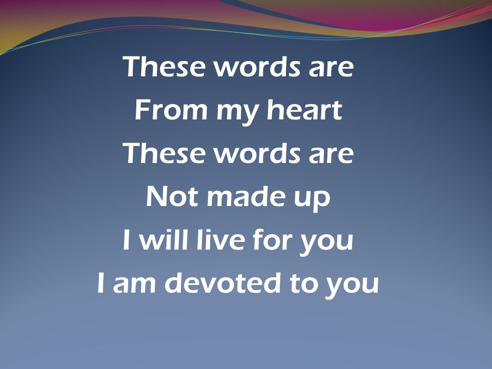 These words are From my heart Not made up I will live for you I am devoted to you