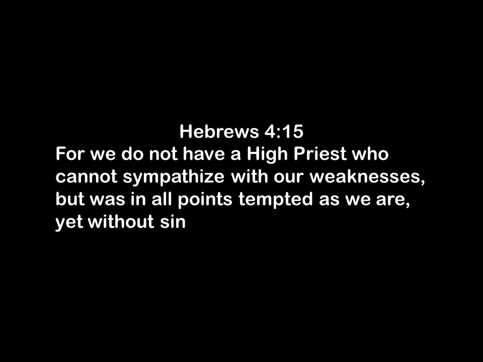 Hebrews 4:15 For we do not have a High Priest who cannot sympathize with our weaknesses, but was in all points tempted as we are, yet without sin.