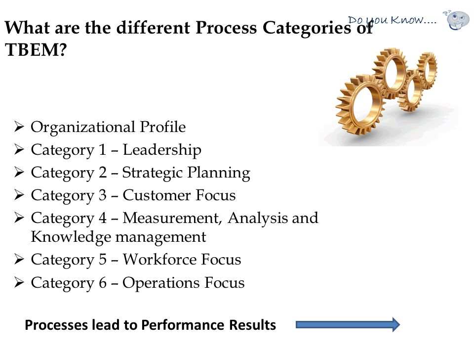 What are the different Process Categories of TBEM