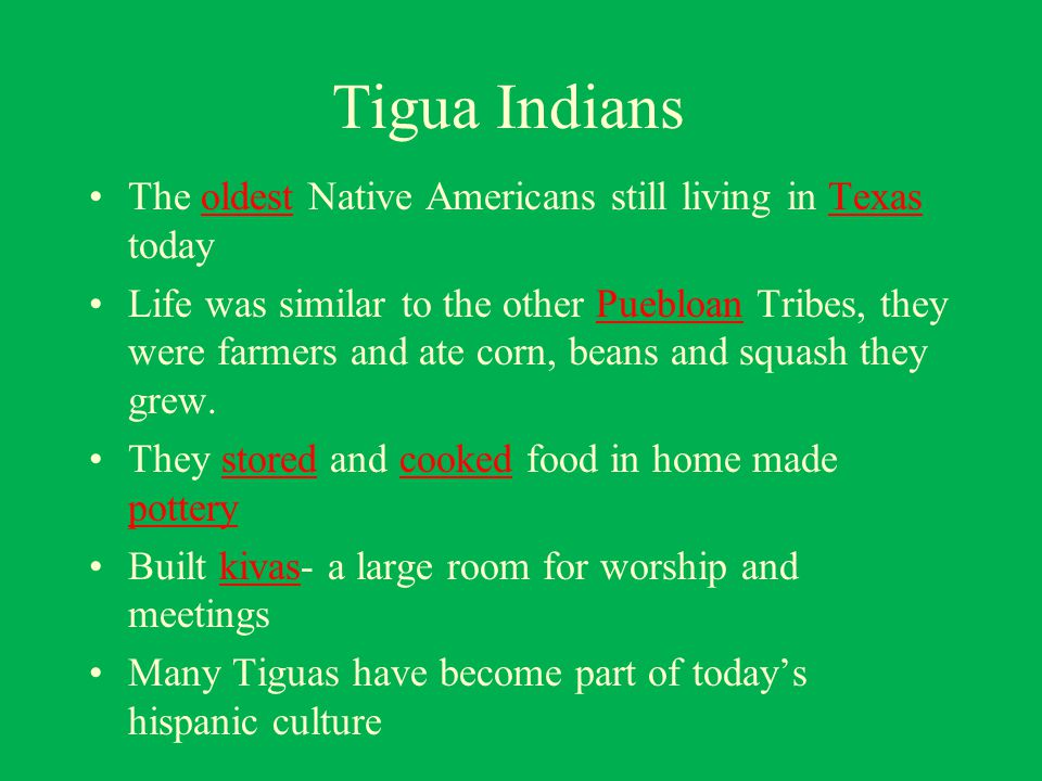 Native Americans in Texas - ppt download