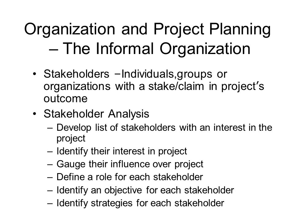 Organization and Project Planning – The Informal Organization