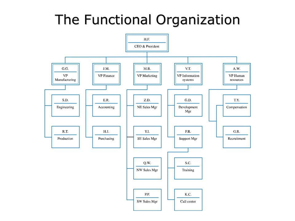 The Functional Organization