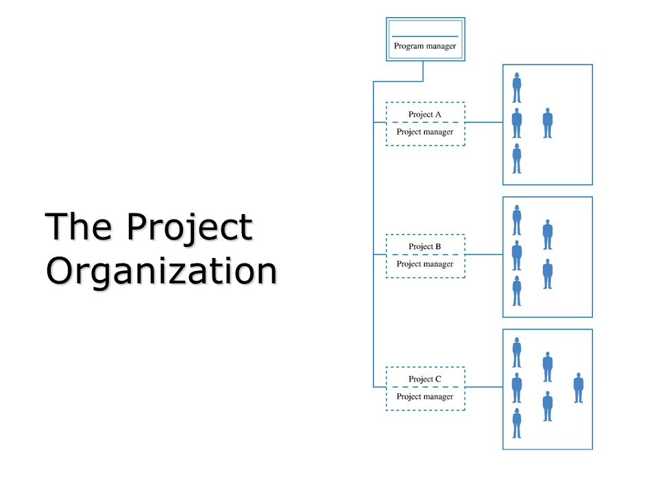 The Project Organization