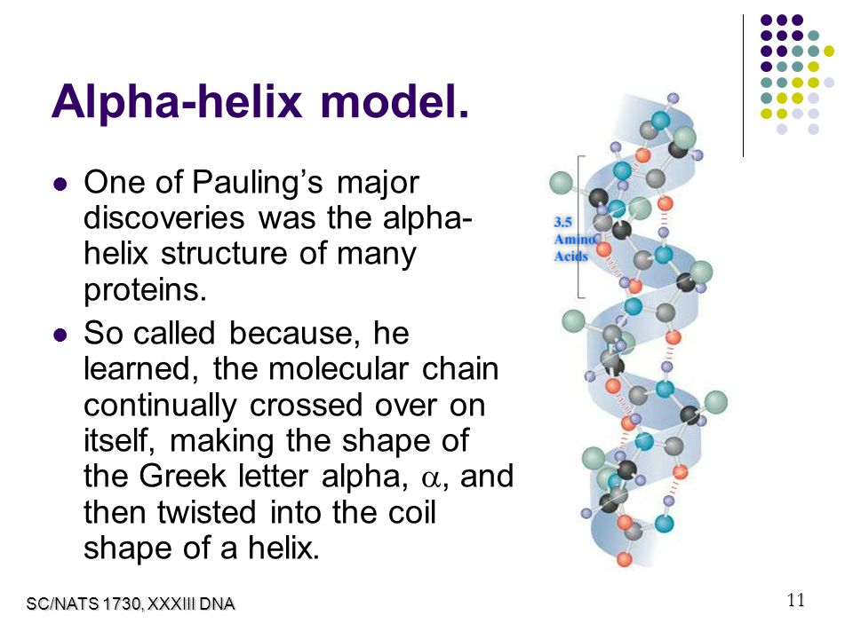 how to draw an alpha helix
