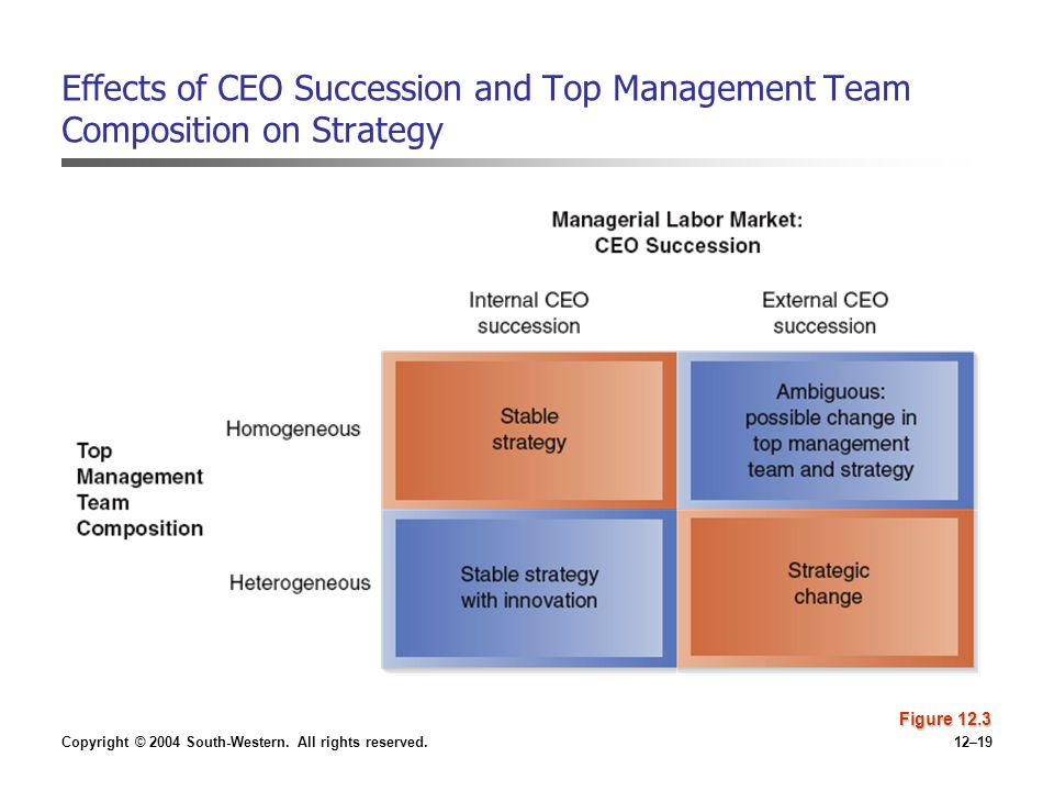 Effects of CEO Succession and Top Management Team Composition on Strategy