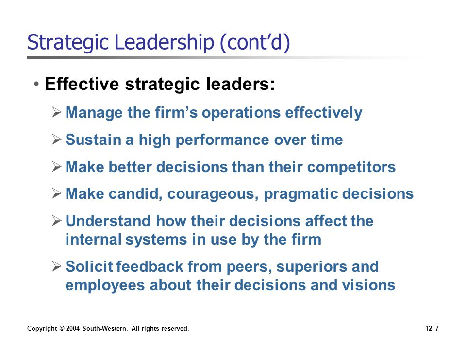 Strategic Leadership (cont'd)