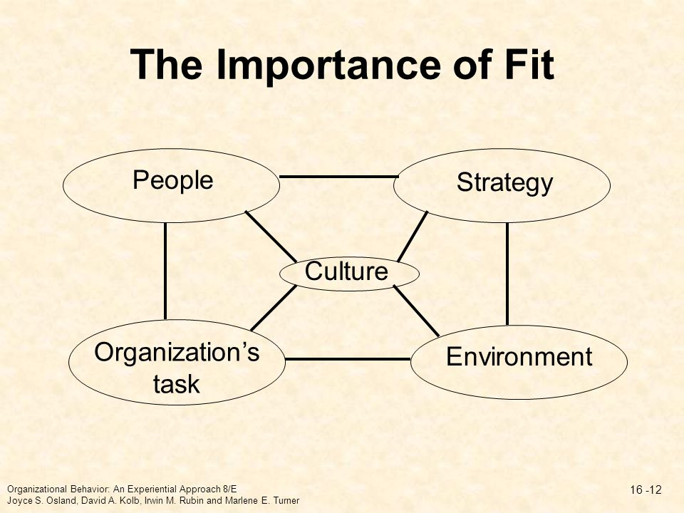 The Importance of Fit People Strategy Culture Organization's task