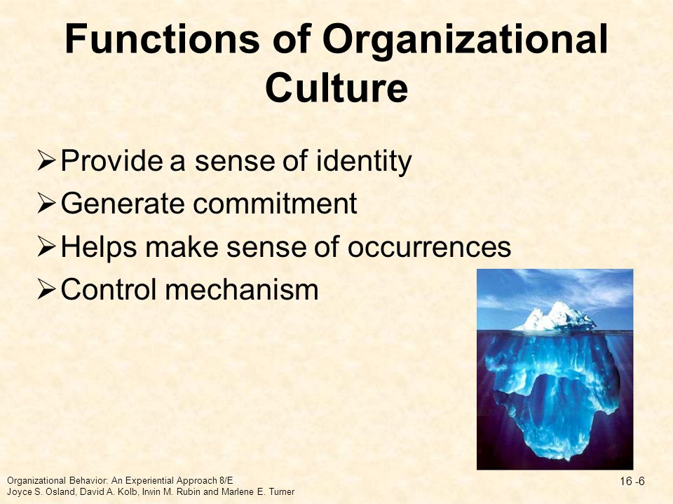 Functions of Organizational Culture