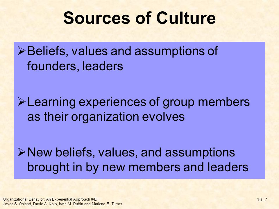 Sources of Culture Beliefs, values and assumptions of founders, leaders. Learning experiences of group members as their organization evolves.