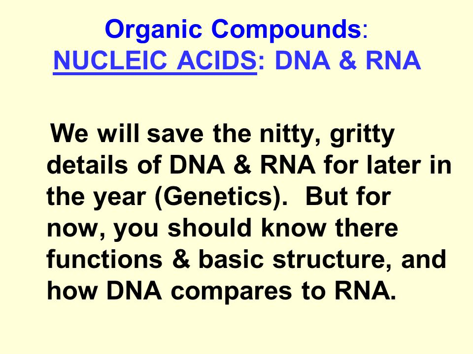 Organic Compounds: NUCLEIC ACIDS: DNA & RNA