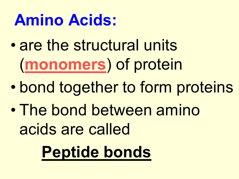 Amino Acids: are the structural units (monomers) of protein. bond together to form proteins. The bond between amino acids are called.