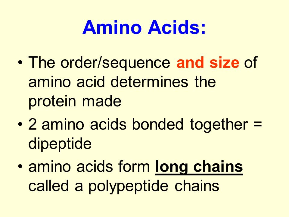 Amino Acids: The order/sequence and size of amino acid determines the protein made. 2 amino acids bonded together = dipeptide.