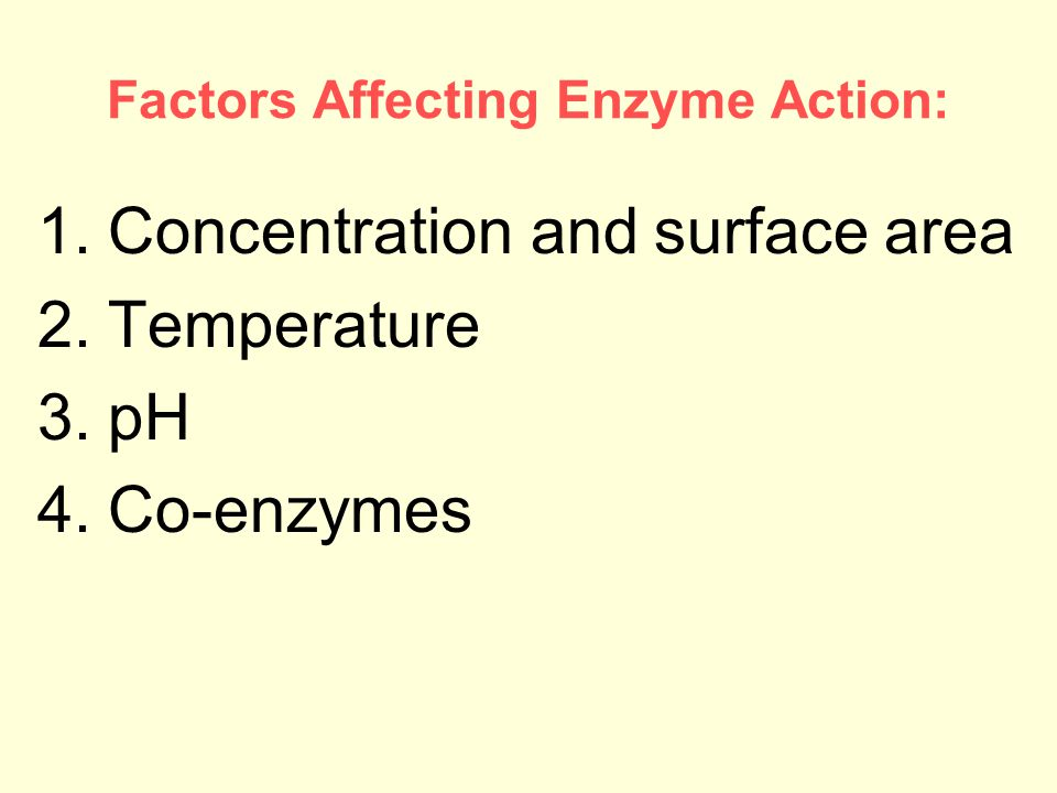 Factors Affecting Enzyme Action: