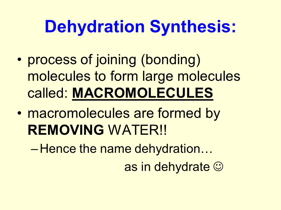 Dehydration Synthesis: