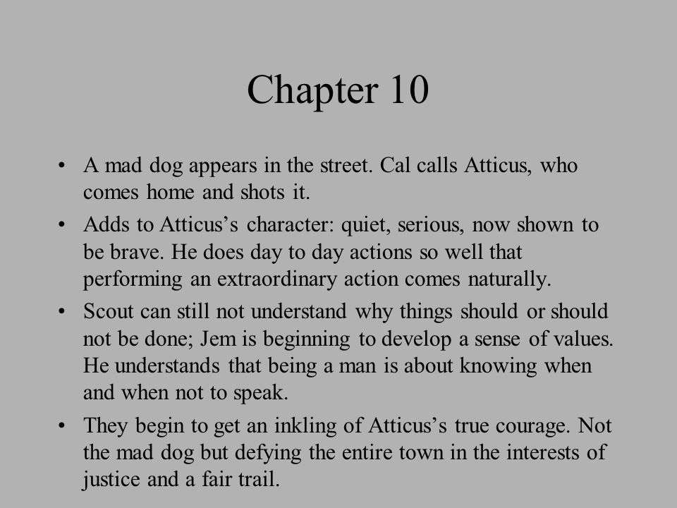 to kill a mockingbird: atticus one shot finch essay Start studying to kill a mockingbird essay questions atticus finch is an archetype of atticus was right one time he said you never really know a man until.