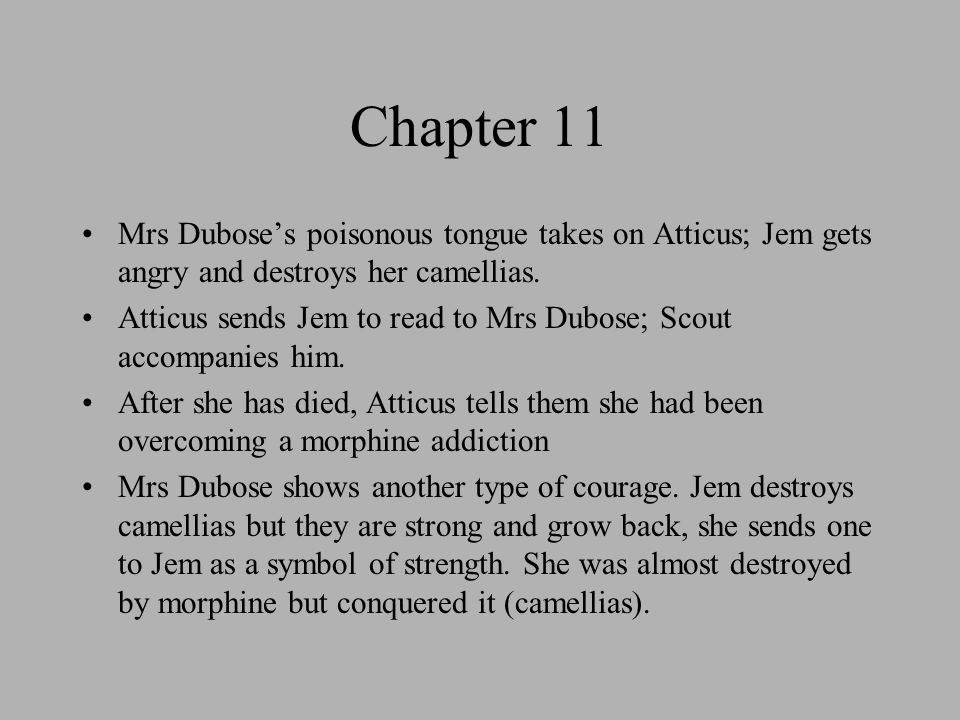 mrs dubose misjudge scout Irony in to kill a mockingbird  jem will be killed when atticus sends him to mrs dubose's house 4 scout's  jem tells mrs dubose that he isn.