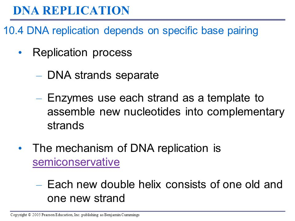 the process of dna separation by electrophorosis Electrophoresis is the process by which molecules (such as proteins, dna, or rna fragments) can be separated according to size and electrical charge by applying an electric current to them.