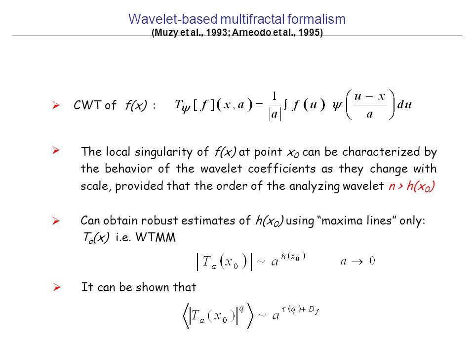 Wavelet-based multifractal formalism (Muzy et al., 1993; Arneodo et al., 1995)