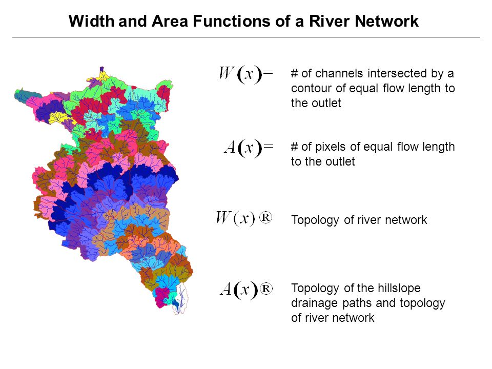 Width and Area Functions of a River Network