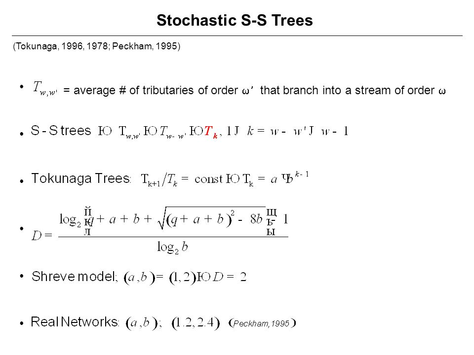 Stochastic S-S Trees (Tokunaga, 1996, 1978; Peckham, 1995) • = average # of tributaries of order w¢ that branch into a stream of order w.