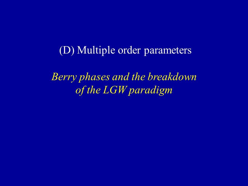 (D) Multiple order parameters Berry phases and the breakdown