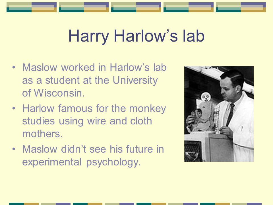 Harlow monkey study psychology