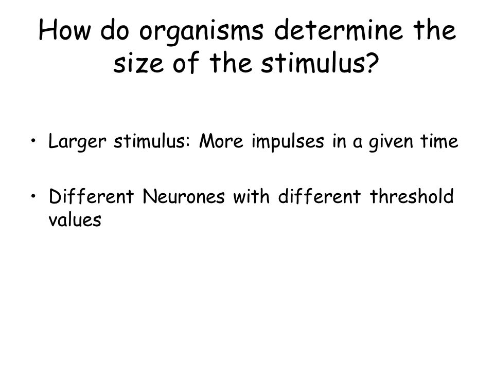 How do organisms determine the size of the stimulus